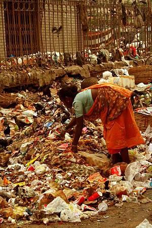 印度加爾各答-新市集new market-晨訪菜市場 072.jpg