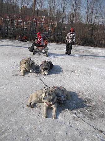 中國東北極凍之旅-哈爾濱滑雪趣-名都滑雪場_1380.JPG
