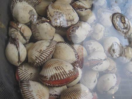 大連海鮮美食-船歌魚水餃_0671