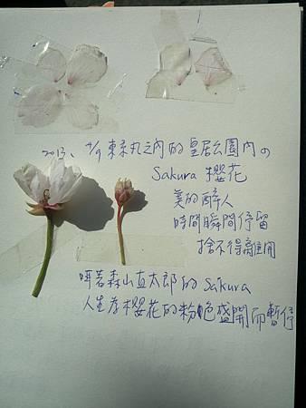 2013-04-09 14.06.42