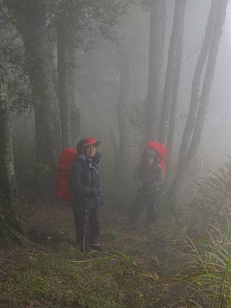 南投竹山杉林溪-爬山初體驗-【水漾森林+鹿屈山】_25.JPG