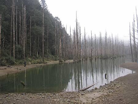 南投竹山杉林溪-爬山初體驗-【水漾森林+鹿屈山】_52.JPG