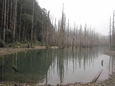 南投竹山杉林溪-爬山初體驗-【水漾森林+鹿屈山】_54.JPG