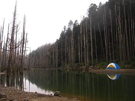 南投竹山杉林溪-爬山初體驗-【水漾森林+鹿屈山】_55.JPG