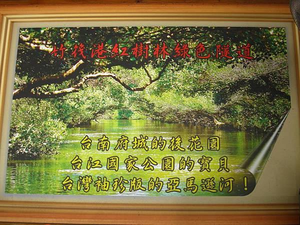 台灣秘境-迷你版亞馬遜河-台南四草生態園區-綠色隧道_5.JPG