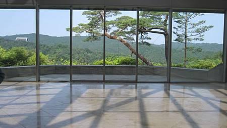 201405日本關西-京都奈良散落美景.JPG