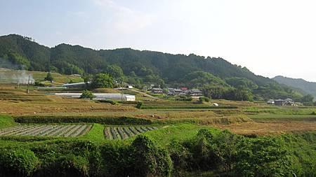 201405日本關西-京都奈良散落美景_7.JPG