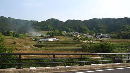 201405日本關西-京都奈良散落美景_8.JPG