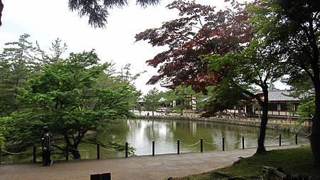 201405日本關西-京都奈良散落美景_12.JPG
