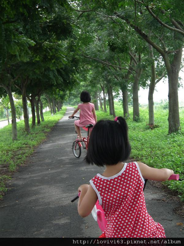 堤防騎單車記2.JPG