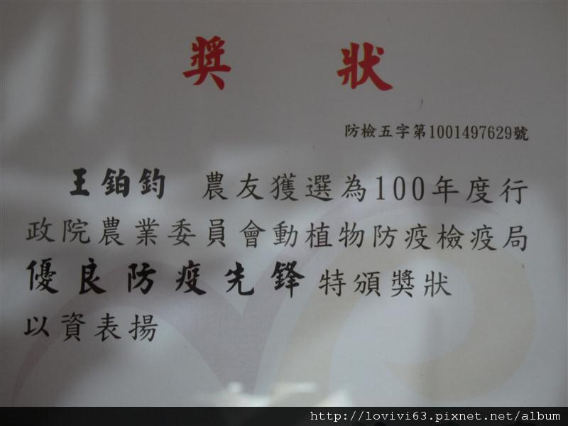 P1010467.JPG