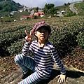 IMAG4500.jpg