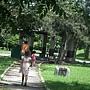 台東~森林公園