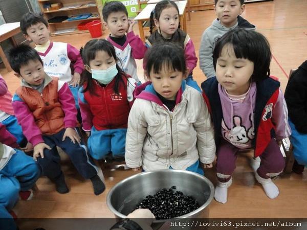 膨脹的黑豆.jpg
