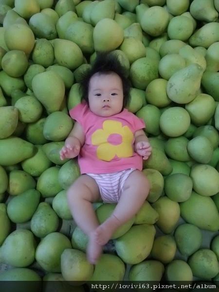 柚子寶寶~可愛風5.jpg