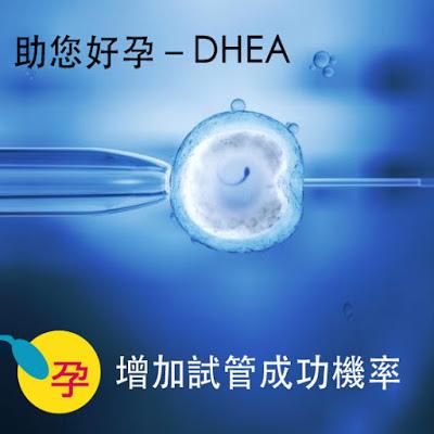 DHEA試管成功機率.jpg