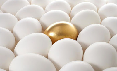 DHEA卵子品質與數量