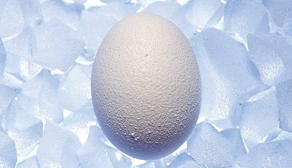 冷凍卵子.jpg