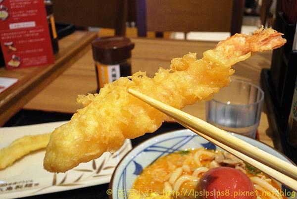 丸龜製麵 ~ 炸蝦 1
