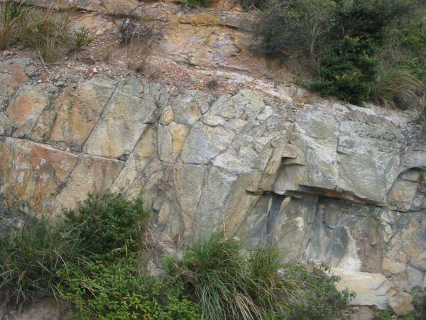 木山層砂岩