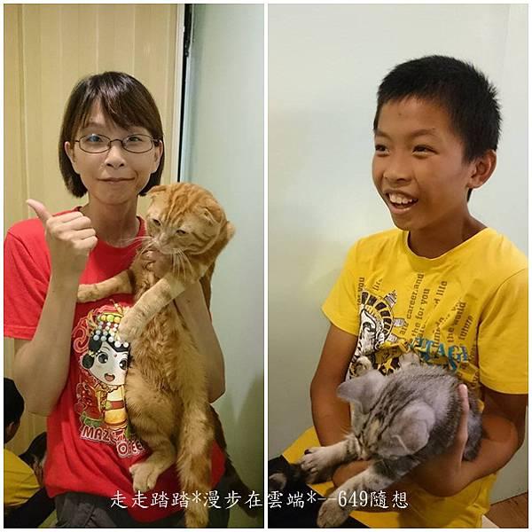 cats貓1.jpg
