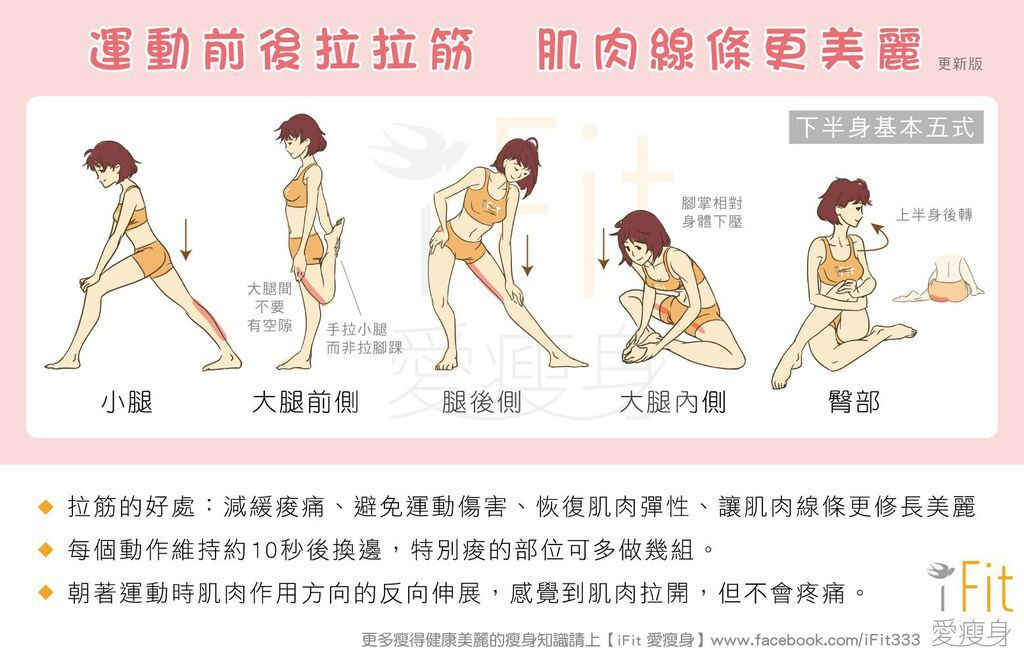 【瘦運動】運動前後拉拉筋,肌肉線條更美麗(更新版)