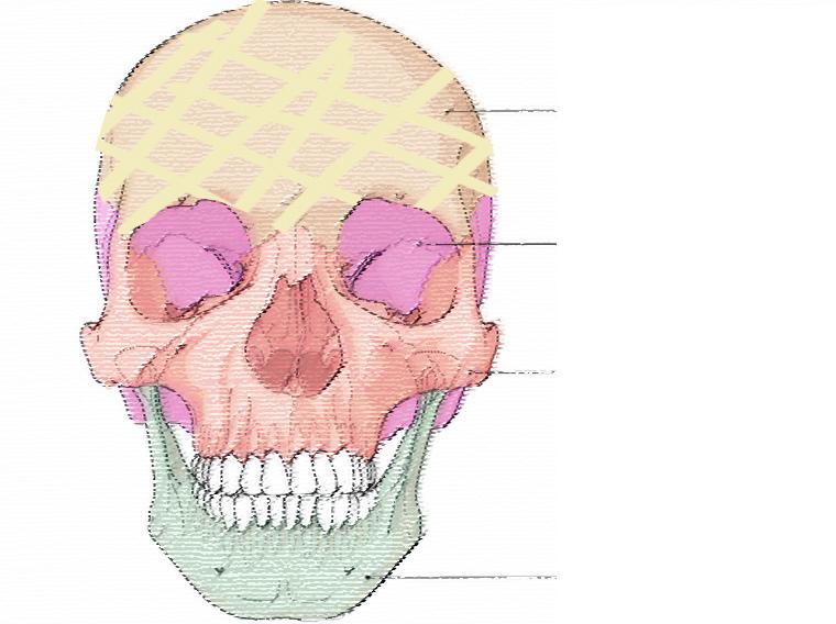 超音波拉皮推薦極線音波拉提筋膜拉皮超音波拉皮費用價格多少錢03