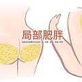 冷凍溶脂冷凍減脂非侵入式體雕抽脂副作用肚子瘦手臂大腿小腹屁股sculpsure11
