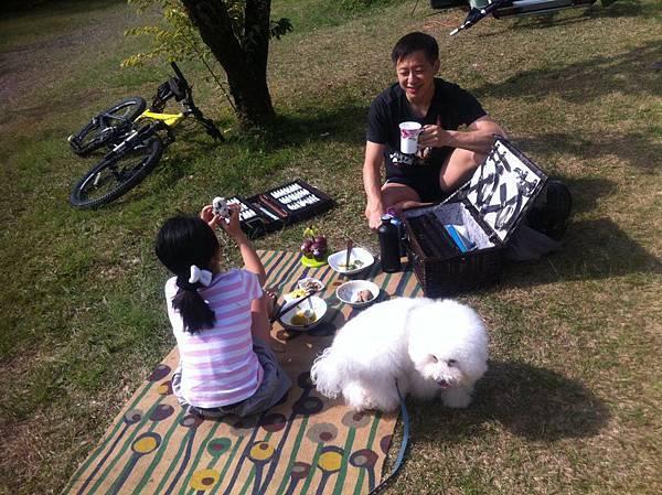 Brunch picnicking