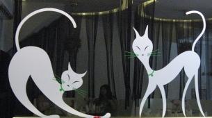 喬西小館的4隻小貓之3+4
