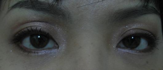 20090110春妝眼部特寫.JPG