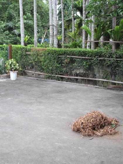 剛做完木作的木屑