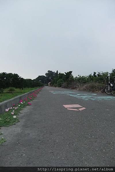 DSCF1032.JPG