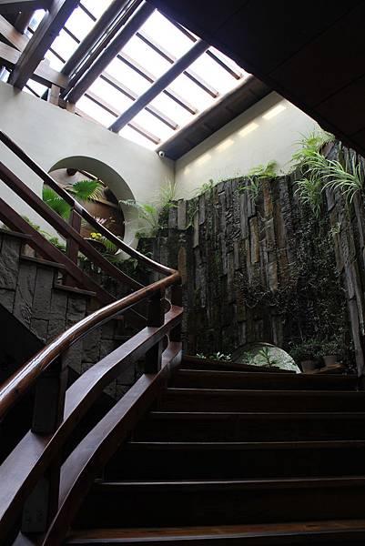 有著各式各樣藤蔓植物的樓梯間