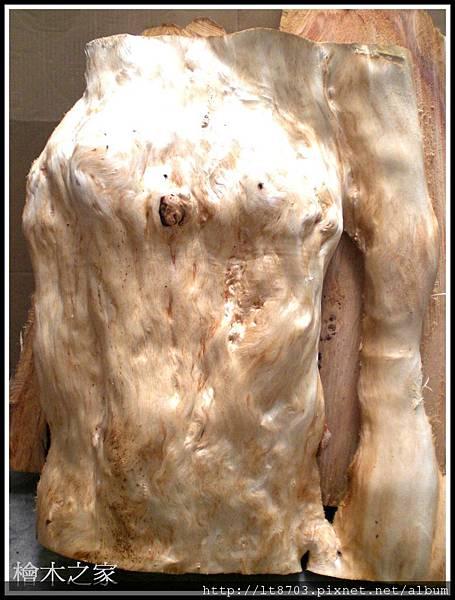 似人體樹瘤檜木.jpg