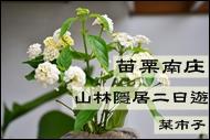 DSC_1337-1