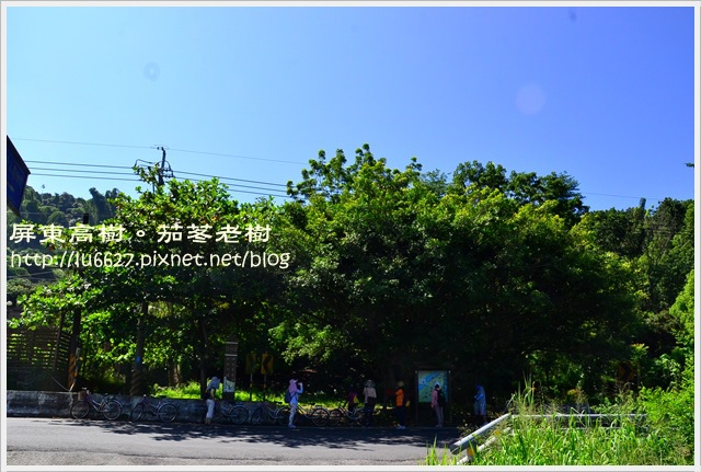 DSC_0716.JPG