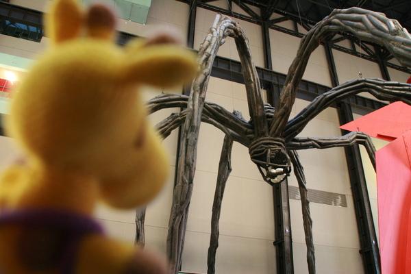 鹿鹿很專心看著大蜘蛛