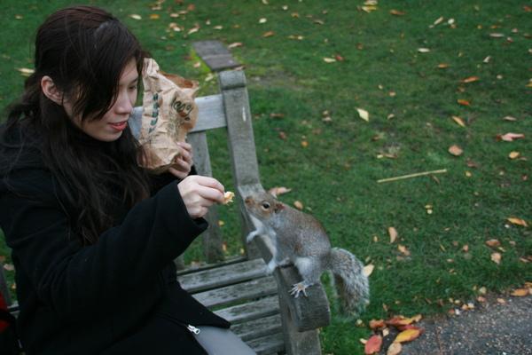 Lulu餵松鼠