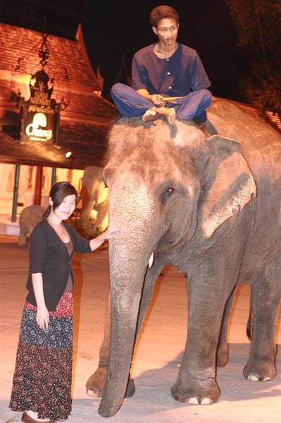 大象ㄝ,摸起來的觸感好怪喔