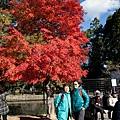 嵐山-3122.jpg