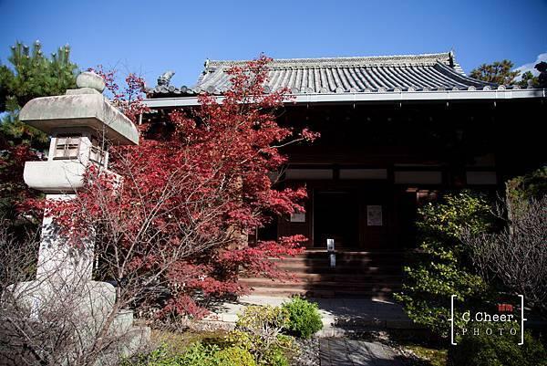 嵐山-3123.jpg
