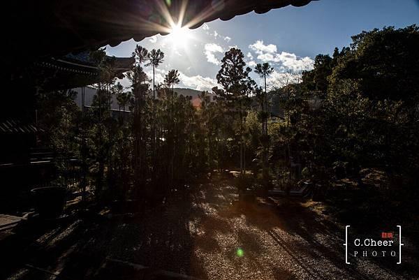嵐山-3131.jpg