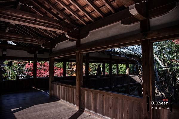 嵐山-3133.jpg