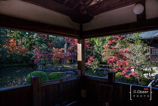 嵐山-3134.jpg