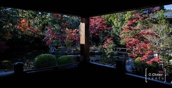 嵐山-3135.jpg
