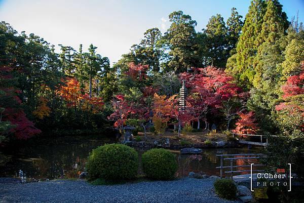 嵐山-3138.jpg