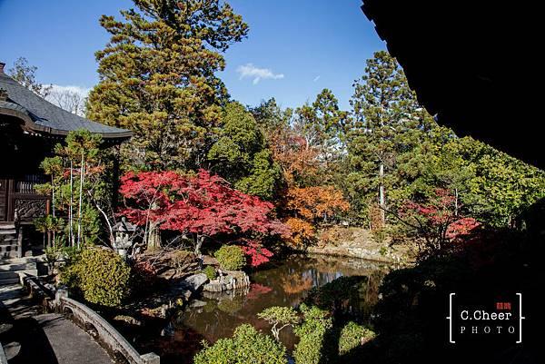 嵐山-3139.jpg