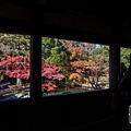嵐山-3141.jpg