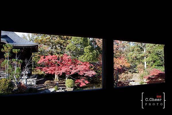 嵐山-3143.jpg